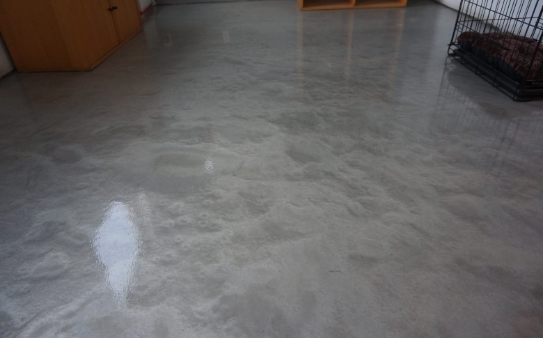 Metallic-Epoxy-Kennel-Commercial-Applications-