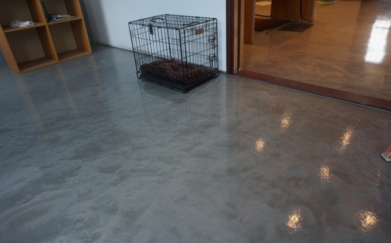 pet-shelter-metallic-epoxy-CRU-decorative-epoxy-chemical-resistant